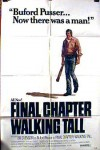 Final Chapter: Walking Tall Movie Download