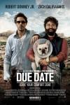 Due Date Movie Download