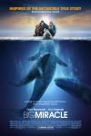 Big Miracle Movie Download