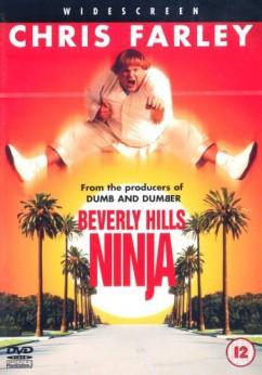 Beverly Hills Ninja Movie Download